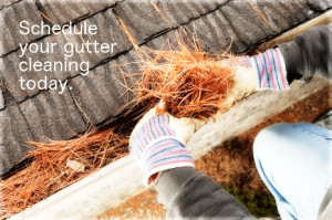 gutter cleaning wauwatosa